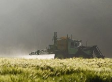 Glyphosate : l'Europe et la France restent sceptiques