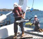 Brest : des résultats prometteurs liés à la recherche de la Cordelière